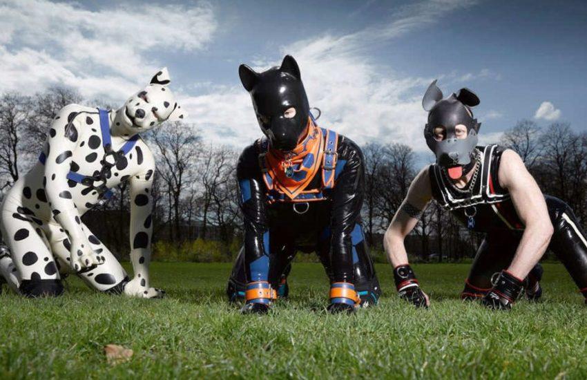 25-man-dogs.w600.h315.2x